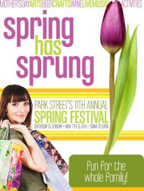 11th Annual Spring Festival