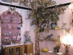 Aphrodite's Closet, Alameda