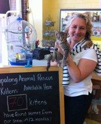 Alameda See Spot Run pet supplies and cat adoption